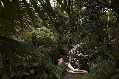 Polly Penrose, 'Kay's Garden, Hackney, July ', 2016