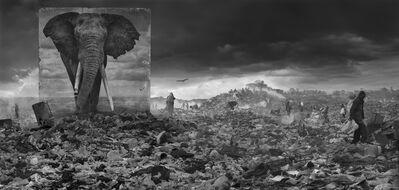 Nick Brandt, ''Wasteland with Elephant' Kenya', 2015