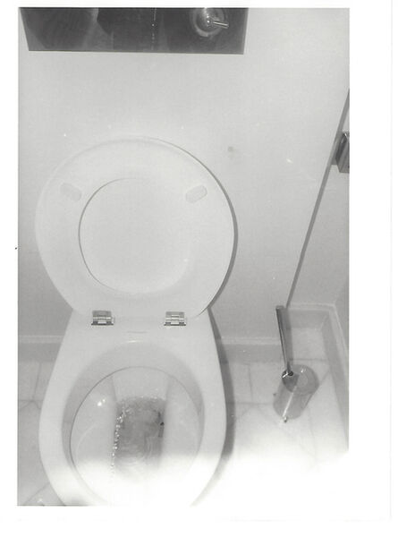 Andy Warhol, 'toilet', 1972-1986