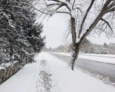 Mike Sinclair, 'Snow, Cleaver Boulevard', 2021