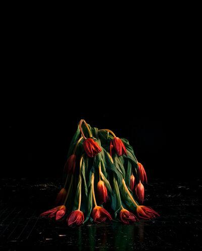 Brigitte Lustenberger, 'Flowers V', 2010