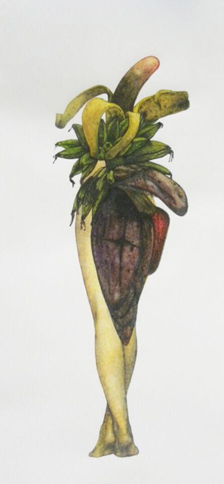 Avishek Sen, 'Legs & Plants', 2013