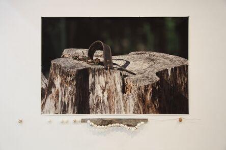 Ricardo Brey, 'Latigazo (Lash whip)', 2013-2014