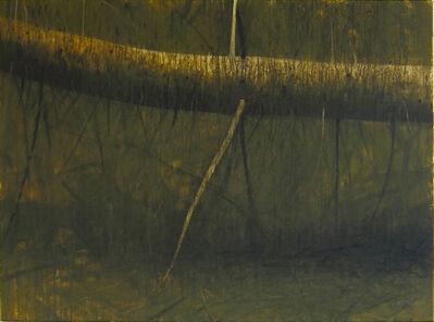 Hugo Fontela, 'Fallen Tree'