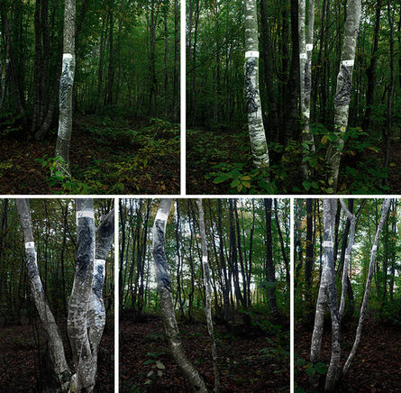 Sibel Horada, 'Impression From The Beech Forest', 2015