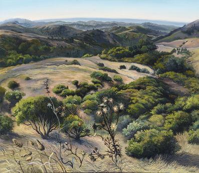 Phyllis Shafer, 'Lavender Morning'