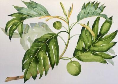 Idoline Duke, 'Breadfruit Branch', 2019