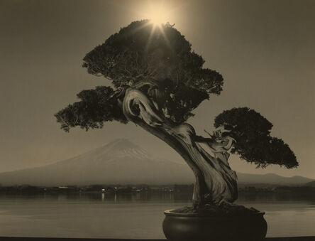 Yamamoto Masao, '#4018', N/A