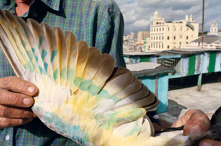 Rebecca Norris Webb, 'Havana, Cuba (from the series Violet Isle)', 2008