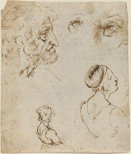 Leonardo da Vinci, 'Sheet of Studies [recto]', Probably 1470/1480