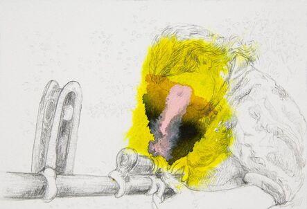 Adriana Ciudad, 'Ya no me amaño sin fierro.', 2014