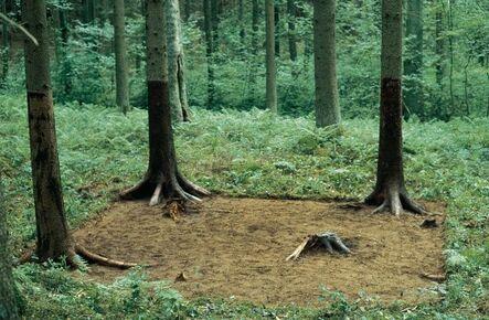 Michael Sailstorfer, 'Waldputz', 2000
