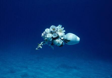 Elspeth Diederix, 'White Flowers Still Life', 2007