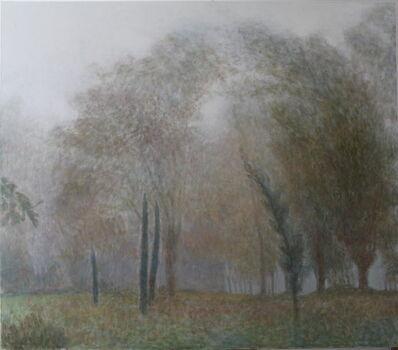 Mari Puri Herrero, 'Jardín con Niebla', 2014