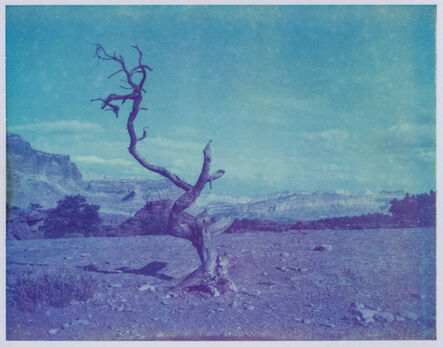 Kirsten Thys van den Audenaerde, 'Deadwood - Contemporary, Polaroid, Landscape, Color, Landmark, Blue', 2017