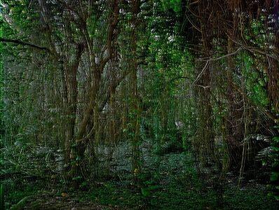 Stephan Ach, 'Visible Calm IV', 2013