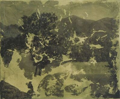 Christine Ng Mien Yin, 'Landscape', 2013