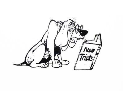 Jesse Harris, 'Old New Tricks'