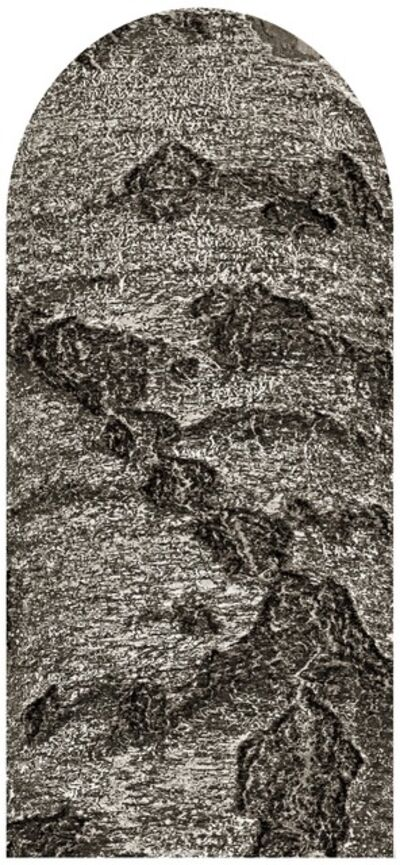 Maria Friberg, 'Mirroring Nature 16', 2019
