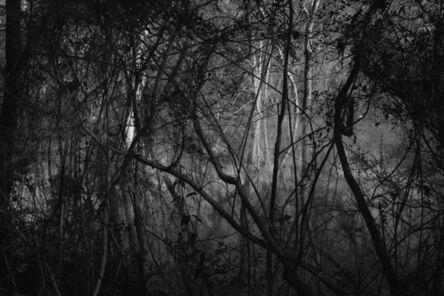 Richard Skoonberg, 'Portal', 2020