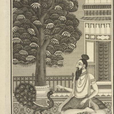 Bernard Picart, 'Yogi Feeding a Peacock with Devotion', 1723