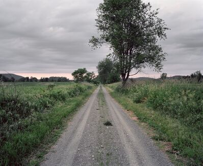 Jeff Brouws, 'Railroad Landscape #83, former Newburgh, Dutchess and Connecticut right-of-way running across Mashomack preserve (abandoned 1938), MP 16.5, view north, Summer, near Briar Hill, New York', 2011