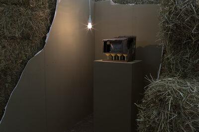 Andra Ursuta, 'Installation view of Lucian '