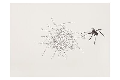 Johanna Calle, 'Sin título (arañas)/Untitled (spiders)', 2015