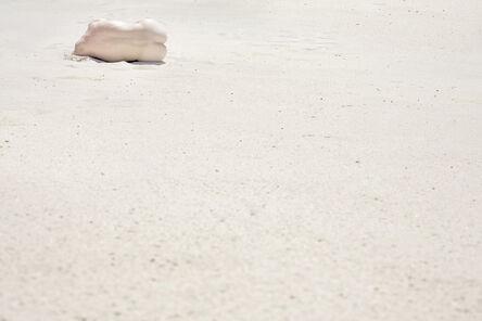 Guilherme Licurgo, 'The Seed  ', 2014