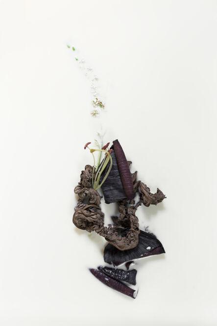 Mariana Palma, 'Sem título [Untitled]', 2017