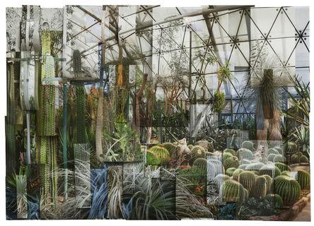 Ji Zhou, 'Greenhouse 1', 2017