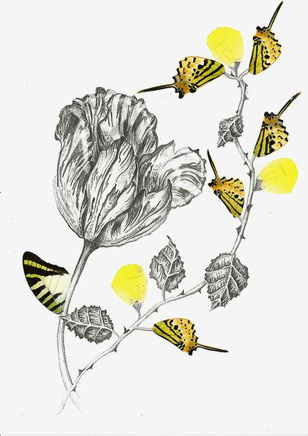 Rachel Marks, 'Hybrid Gardens II', 2019