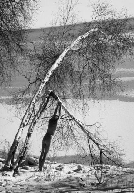 Arno Rafael Minkkinen, 'Broken Birch, Fosters Pond', 2017