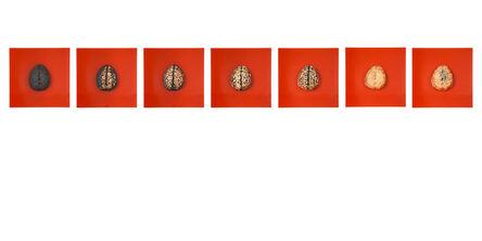 Regine Bechtler, 'Brainologie', 2017