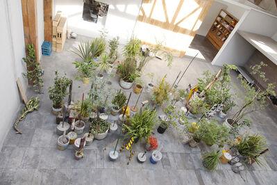 Diego Pérez, 'Esquema para una oda tropical', 2005