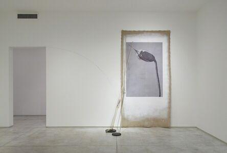 Linarejos Moreno, 'Art Forms in Mechanism XIX', 2016