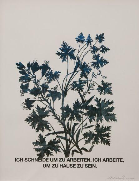 Marcel Odenbach, 'Blattstaude mit Feuerlilie (blau)', 2015