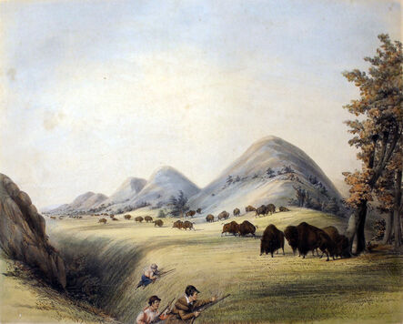 George Catlin, 'Buffalo Hunt Approaching in a Ravine', 1844