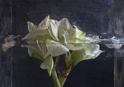 Pilar Pequeño, 'Amarilis (Edition 7 copies) ', 2013