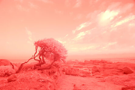 Evan Roth, 'Landscape', 2017