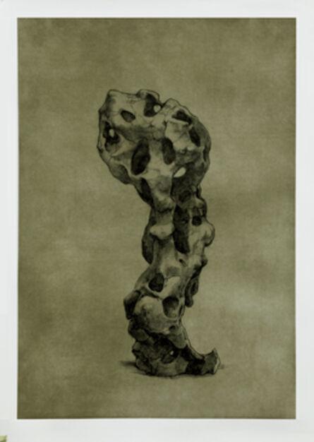 Shao Yinong & Mu Chen 邵逸农 & 慕辰, 'Objects of Nature - Guwei', 2014
