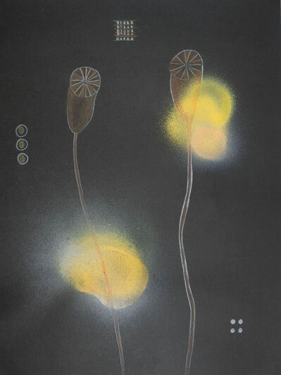 Anke Lohrer, 'Plant me a garden', 2016