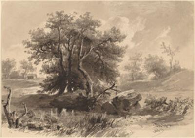 Régis François Gignoux, 'The Trees, Bedford, New York', 1849