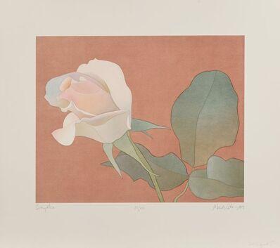 Mark Adams, 'Ivory Rose', 1989