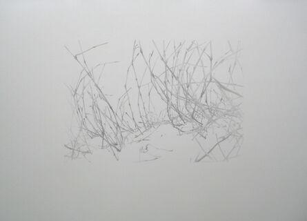 Peter Anders, 'Lieux de Mémoires, 34.000 Jahre Grasnarbe. Napoleonischer Russlandfeldzug, Schlacht bei Borrodino, 1812, Borodino, Zentralrussland', 2010