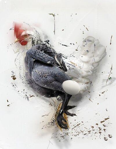 Deborah Oropallo, 'Chicken Egg Chicken #5', 2013