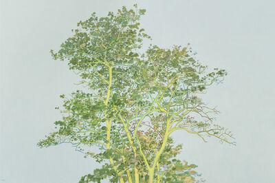 Zhang Hui (b. 1969), 'The Tree', 2015