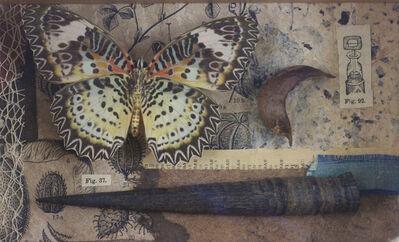Rhiannon Alpers, 'Nymphalidae Cethosia Myrnia', 2014