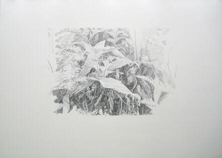 Peter Anders, 'Lieux de Mémoires, 34.000 Jahre Grasnarbe. Fall der ABDACON-Festung Fort Canning im Pazifikkrieg, 1942, Singapur', 2010