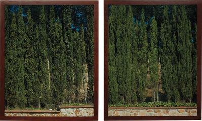 Jean-Marc Bustamante, 'Two works: (i) Cyprès (T.105.91); (ii) Cyprès (T.106.91)', 1991
